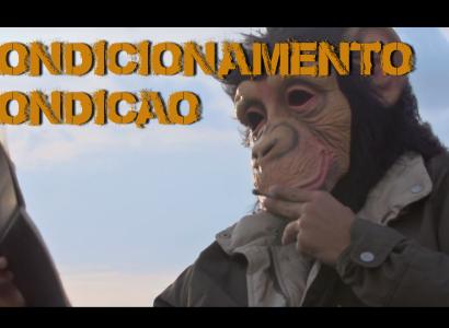 Condicionamento Condição é o novo clipe do grupo Primatas